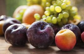 A ameixa não é um fruto proibido antes pelo contrário