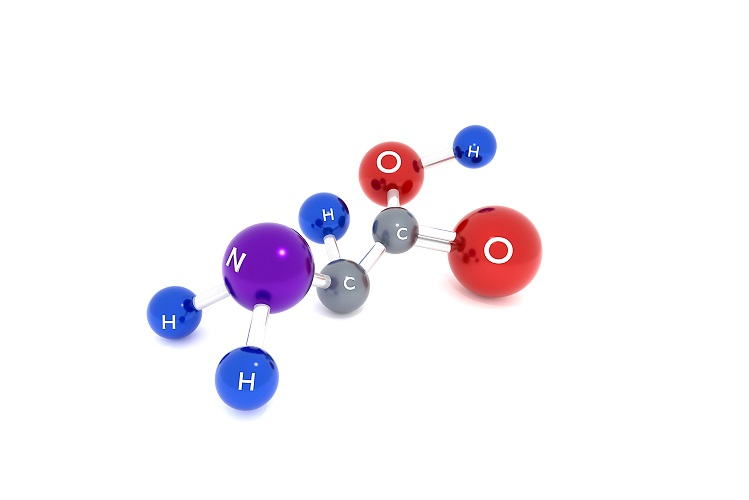 AMINO ACIDS ARE ESSENTIAL FOR YOUR HEALTH